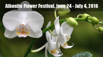2016 Aibonito Flower Festival