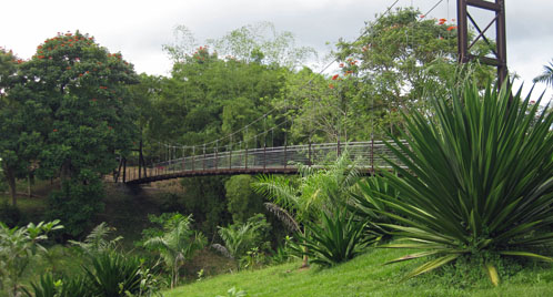 Caguas Botanical Gardens Suspension Bridge