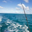 Deep Sea Fishing in Puerto Rico
