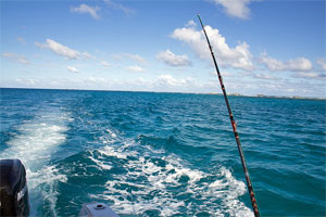 deep sea fishing in puerto rico caribbean