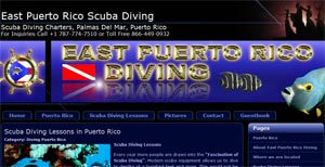 east puerto rico diving