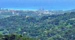 Big Picture: Ocean View from El Yunque Rain Forest