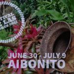 2017 Aibonito Flower Festival | Festival de las Flores