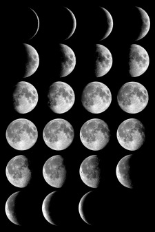 moon phases for bio bay