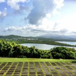 Tours with Para La Naturaleza – The Conservation Trust of Puerto Rico