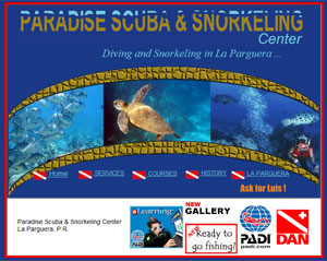 paradise scuba snorkel bio-bay tour